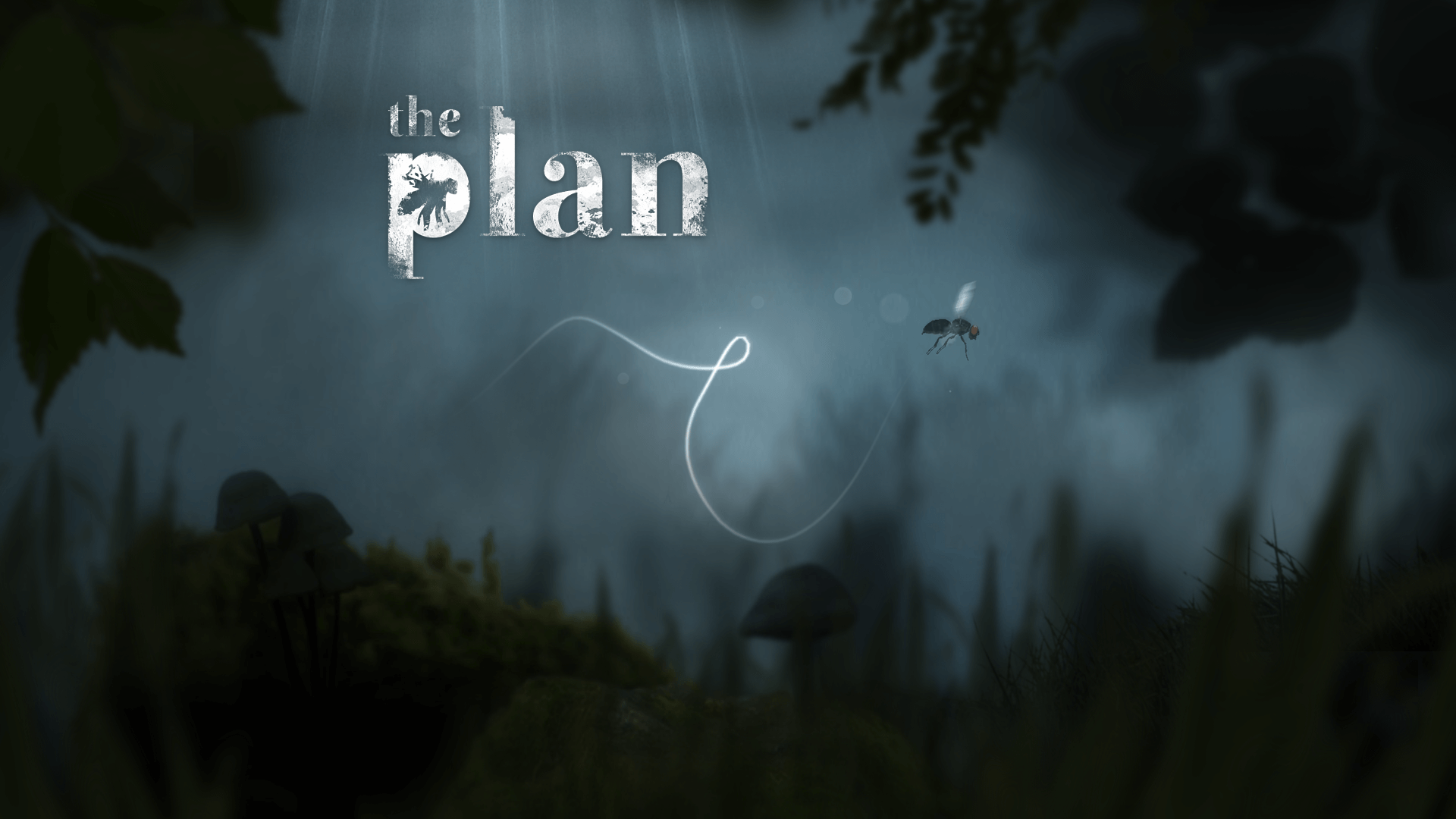 The Plan Review