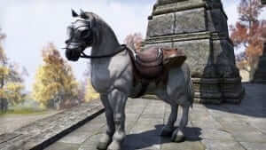 Imperial_White_Horse