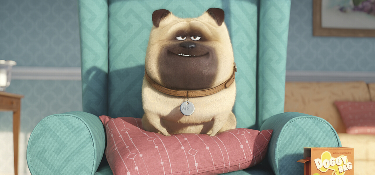 Trailer: 'The Secret Life of Pets' Features Party Animals