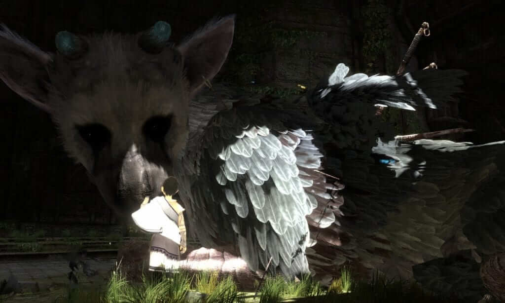 The Last Guardian to Finally Reappear at E3 2015?