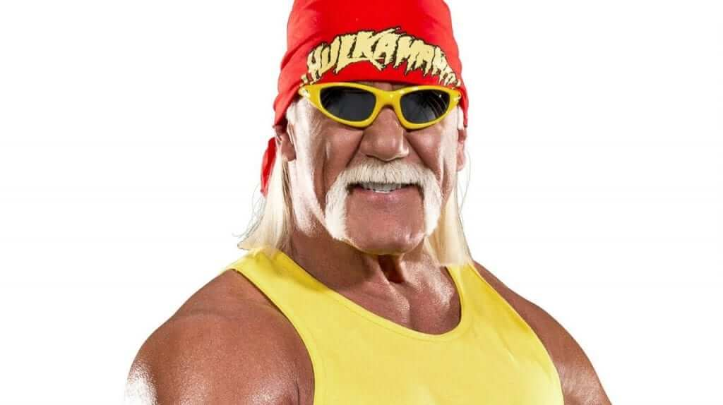 Hulk Hogan Will Not Appear In WWE 2K16