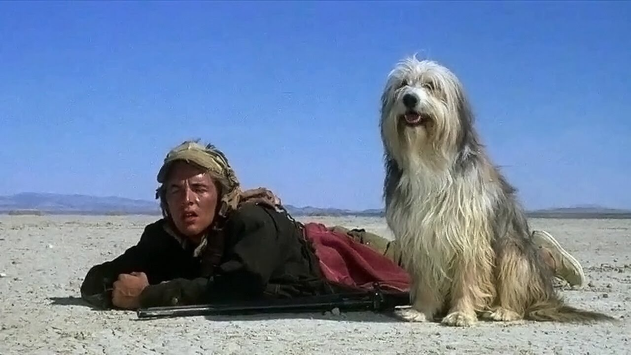 Retro Movie Review: A Boy and His Dog