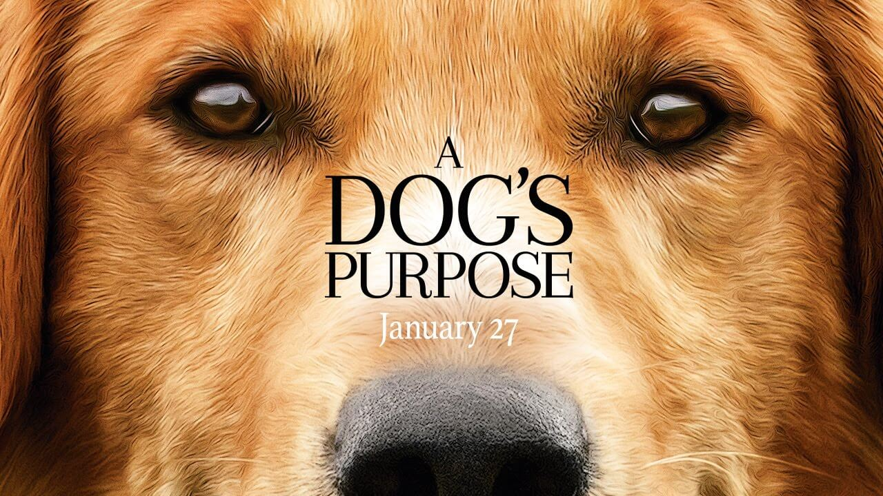 'A Dog's Purpose' Trailer Online Now