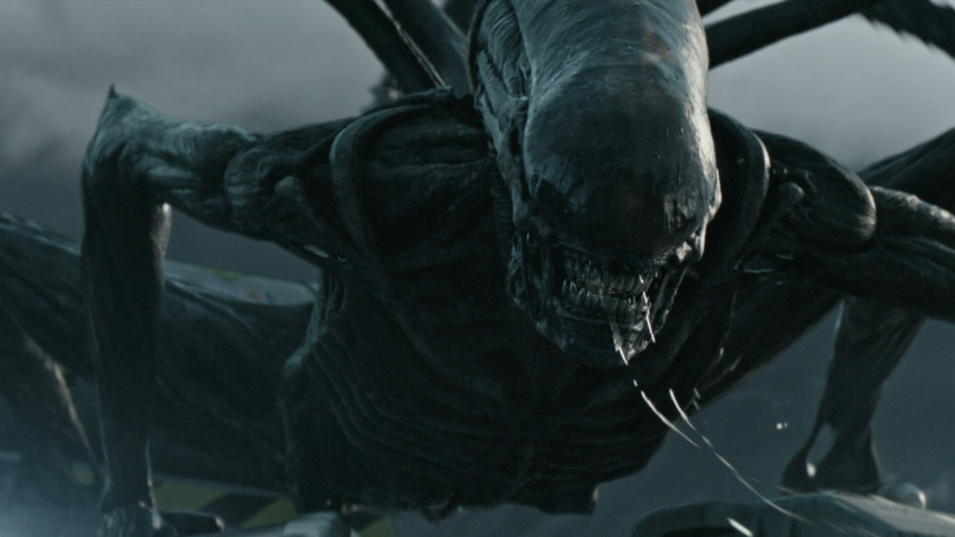 Beware of Spoilers in the First Alien: Covenant Trailer