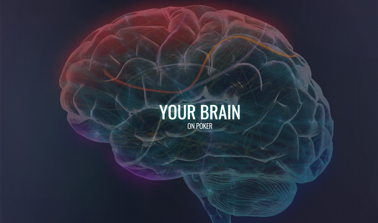 Study Shows Professional Gamers Brains Do Work Differently to Amateurs