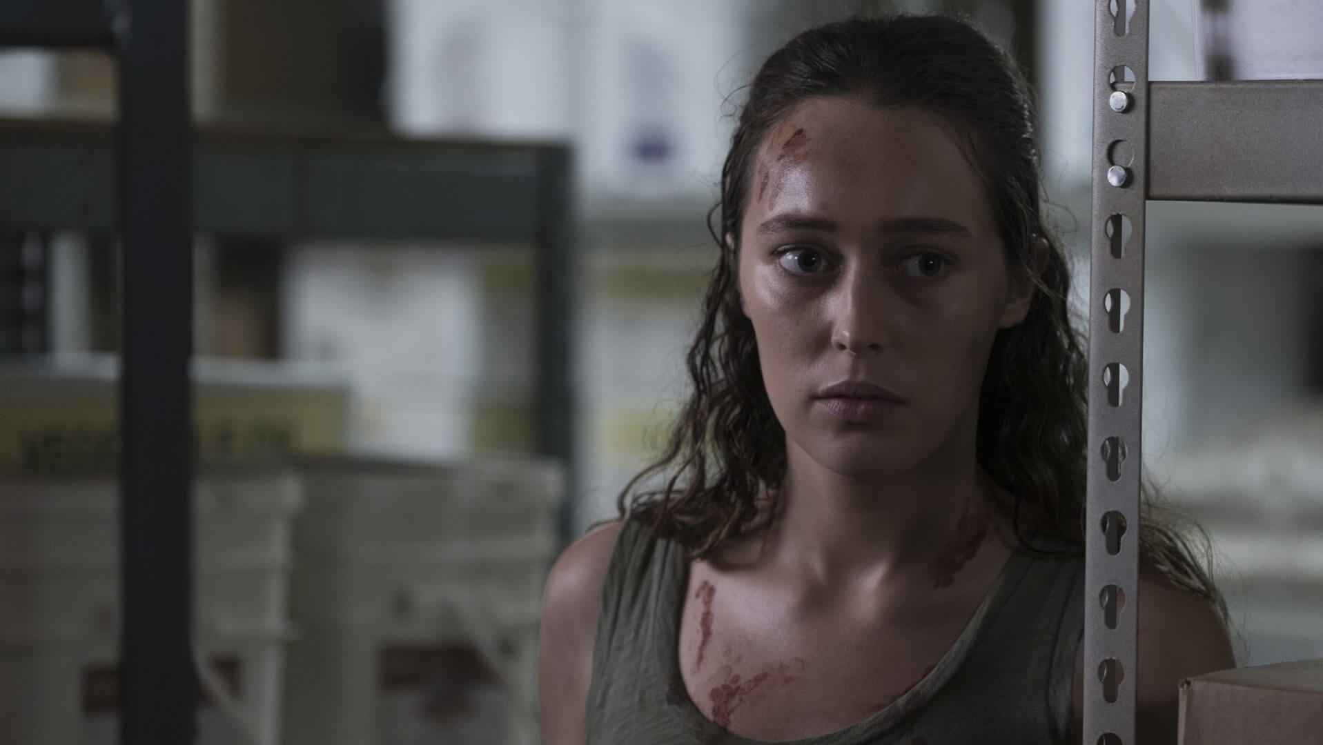 Fear the Walking Dead: This Land Is Your Land Review