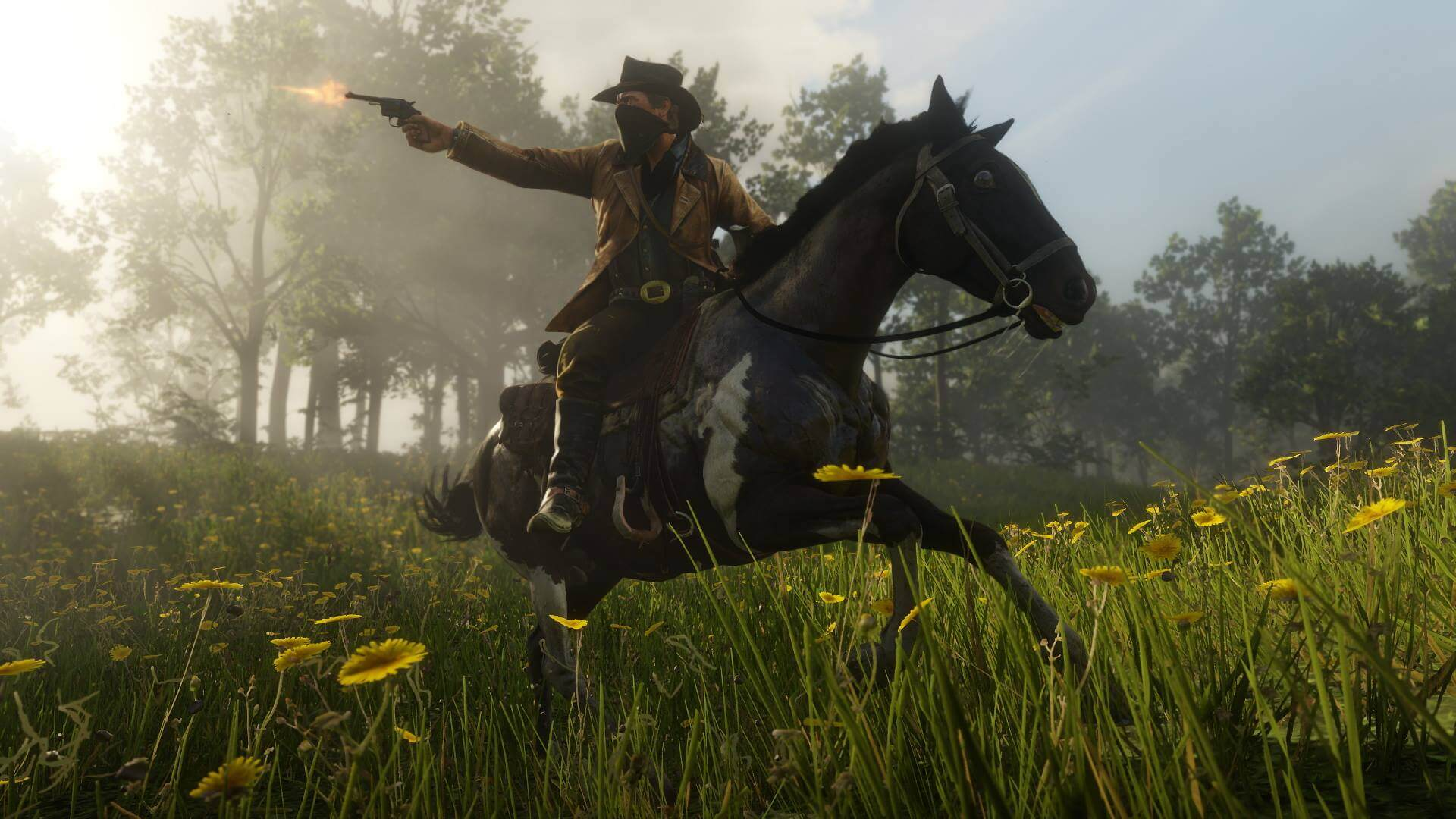 Red Dead Redemption 2 Gameplay Revealed