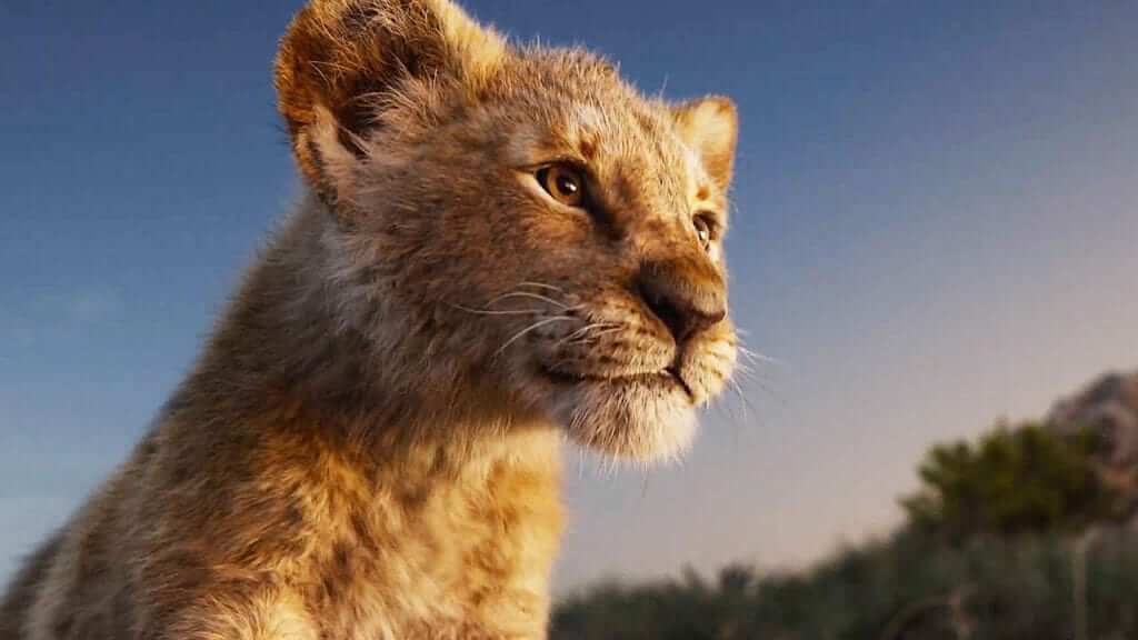 Live Action Official Lion King Trailer Drops!