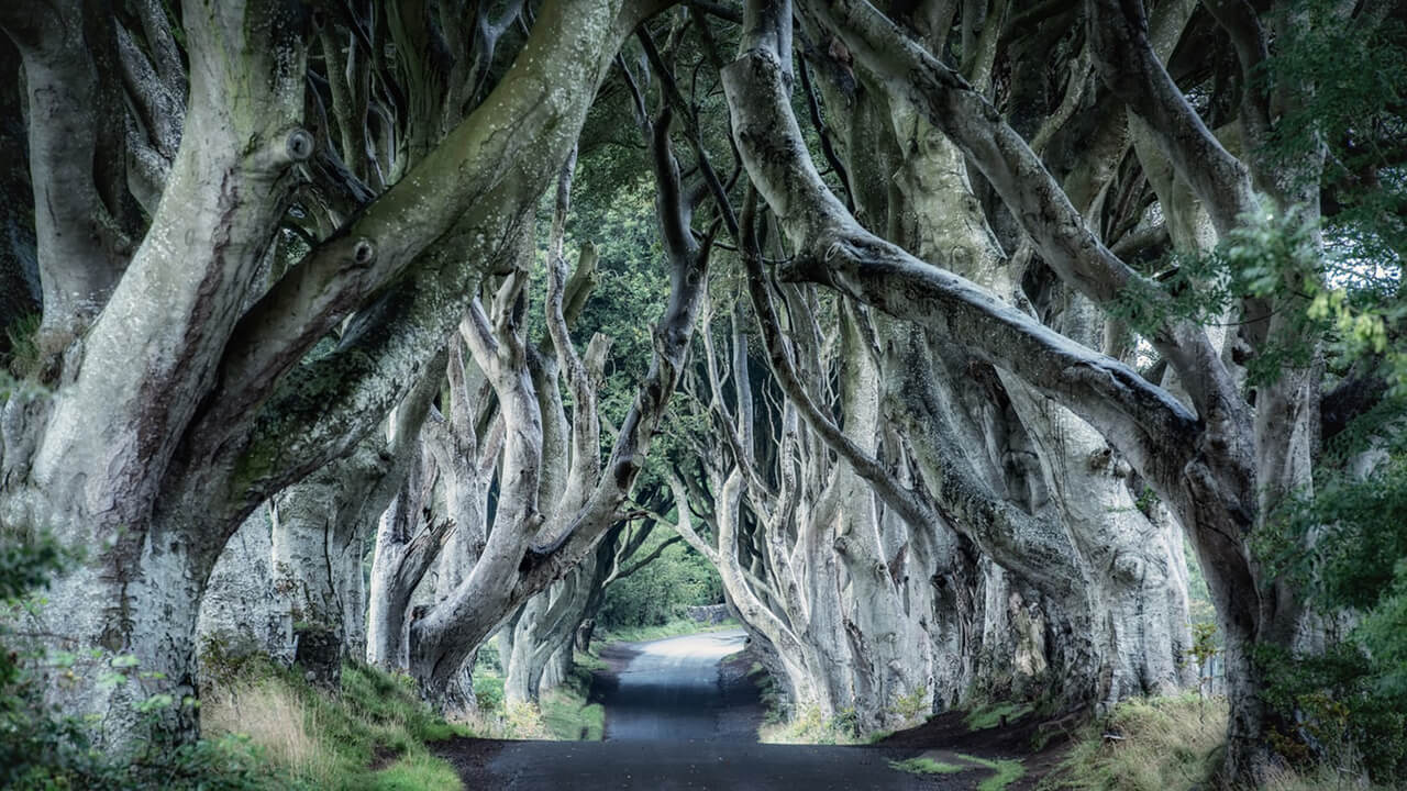 A Game Of Thrones Road Trip Through Northern Ireland