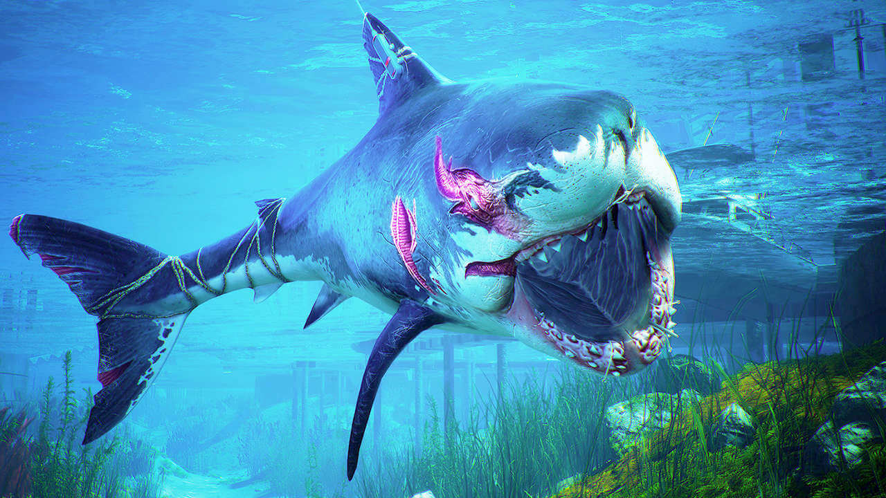 Maneater PS4 Review: A Jawesome Little Game