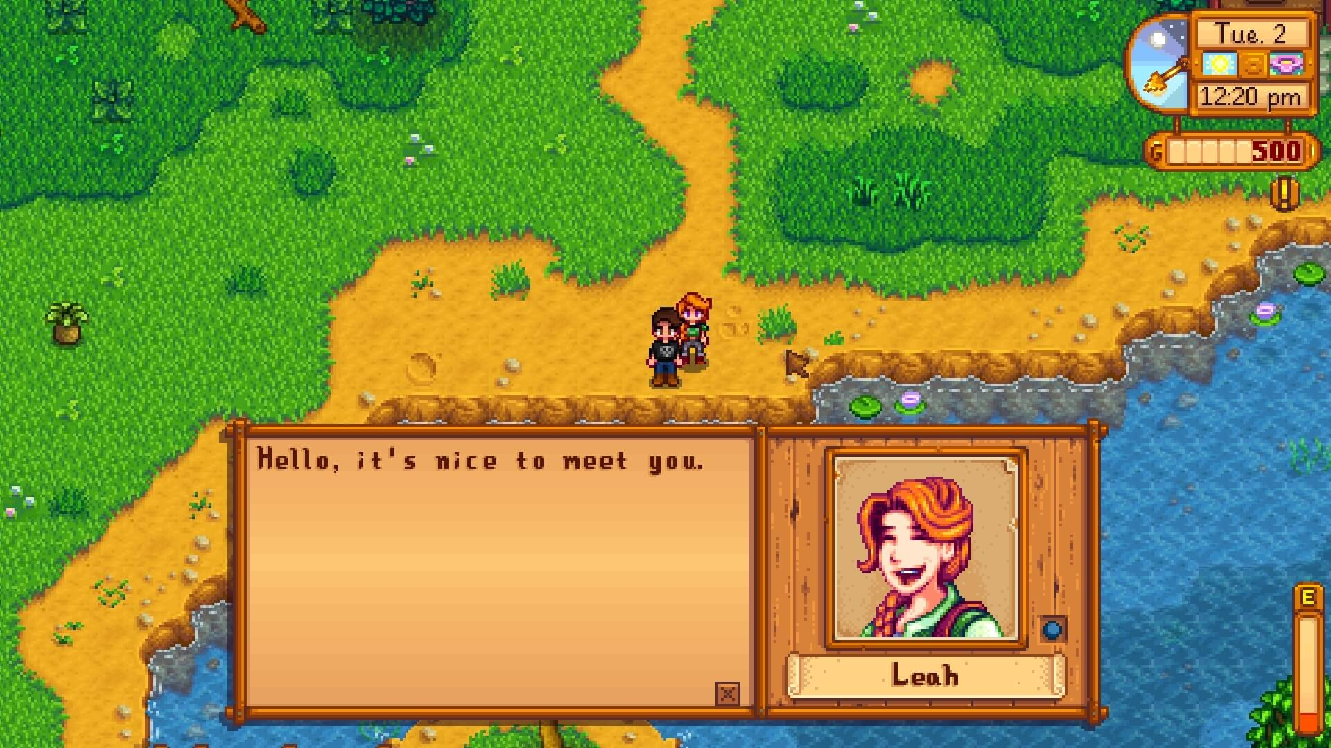 Stardew Valley — Leah Gift Guide