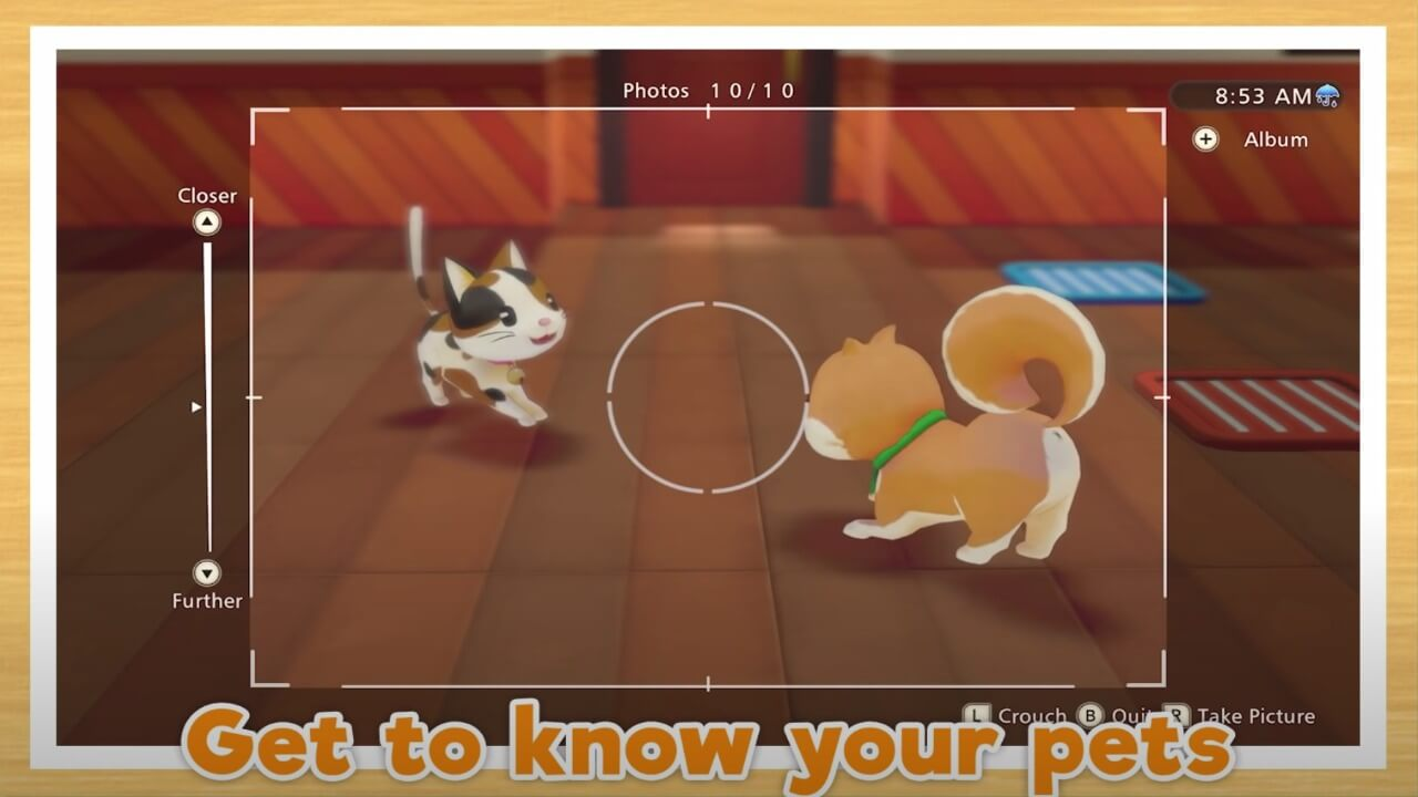 Story of Seasons: Pioneers of Olive Town Guide- How to Get a Pet