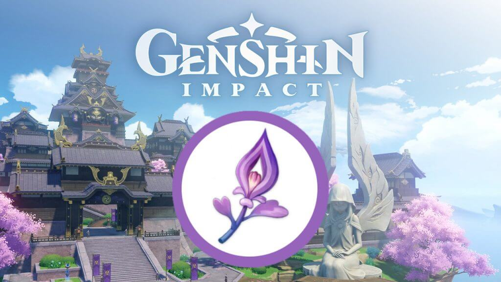 Genshin Impact: Locations to Find Naku Weed