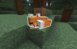 Minecraft: How to Tame a Fox